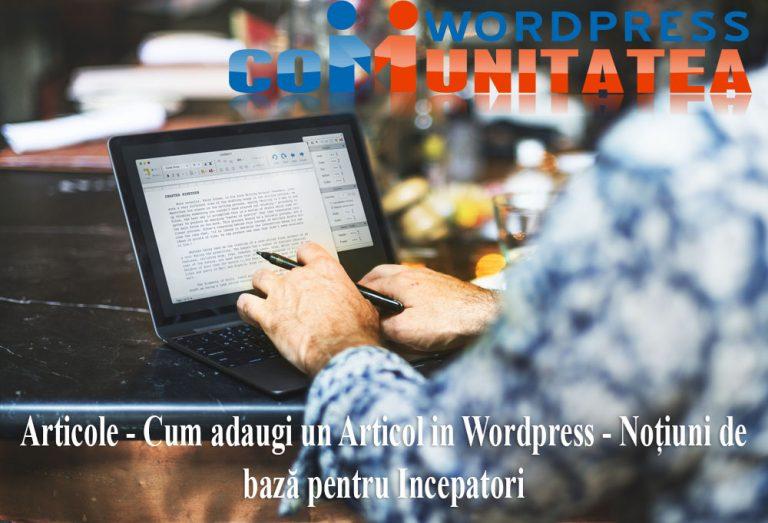 Cum adaugi un Articol in Wordpress – Notiuni pentru Incepatori