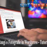 Cum Adaugi o Fotografie in Wordpress