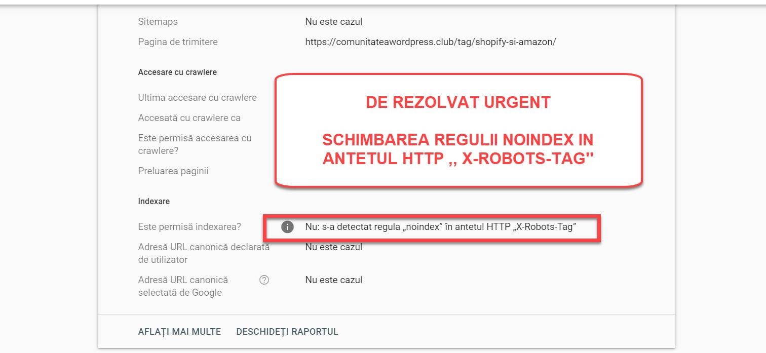 Imaginea 3 - Noindex HTTP X Robots Tag