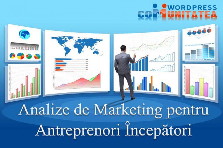 Analize de Marketing pentru Antreprenori Începători
