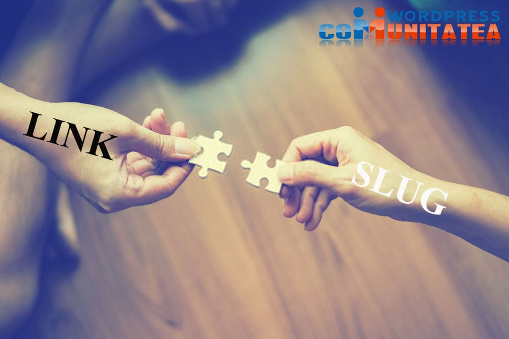 Slug - Ce este și cum să-l optimizezi