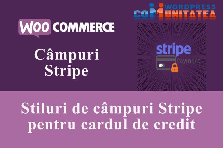 Stiluri de câmpuri Stripe pentru cardul de credit