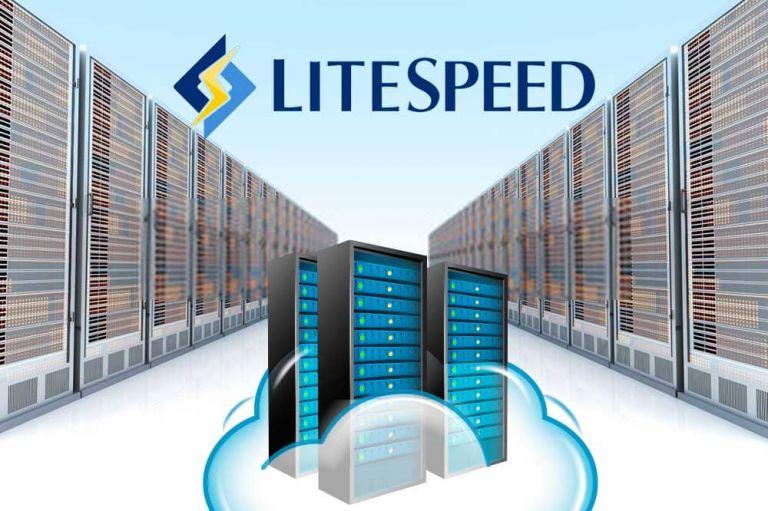 LiteSpeed Web Server pentru viteză mare și performanță