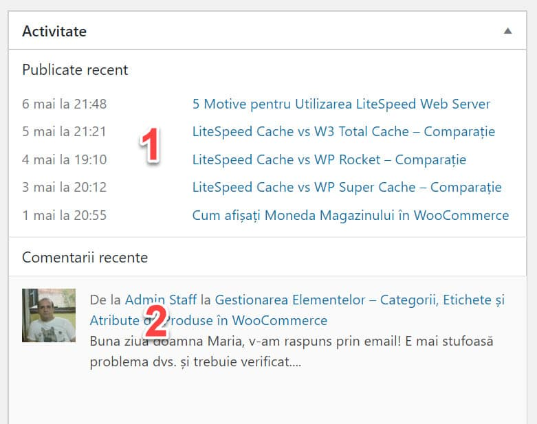 Activitate site WordPress