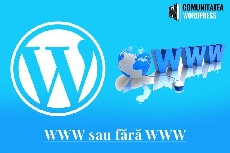 WWW sau fără WWW - Care este mai bun pentru WordPress SEO
