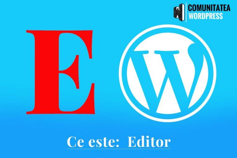 Ce este: Editor