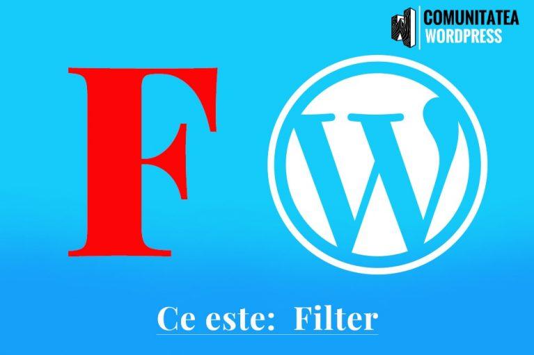Ce este: Filter - Filtru