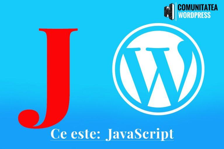 Ce este: JavaScript