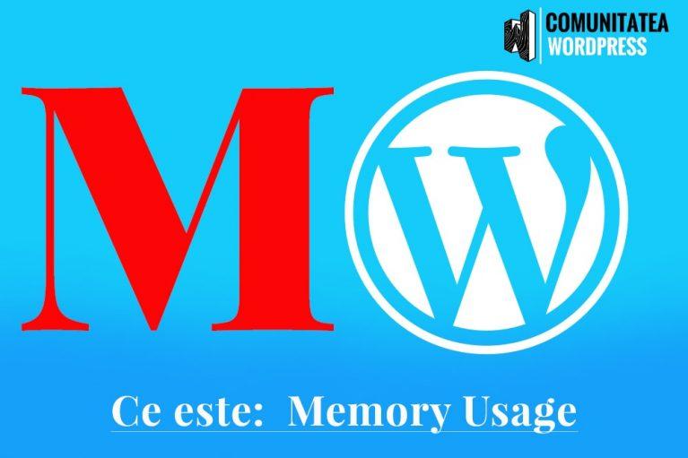 Ce este: Memory Usage - Utilizarea memoriei