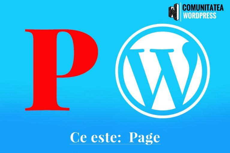 Ce este: Page – Pagina
