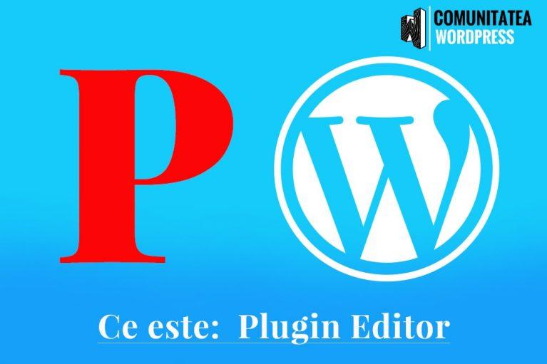 Ce este: Plugin Editor
