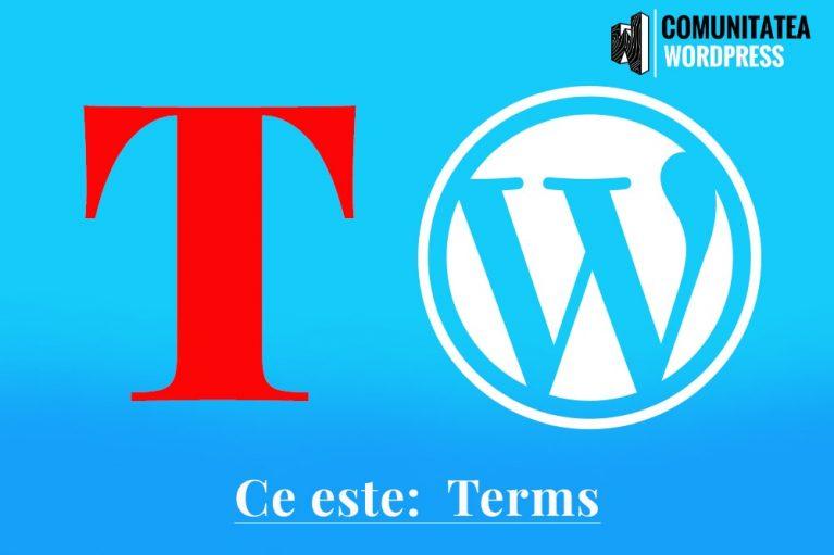 Ce este: Terms – Termeni