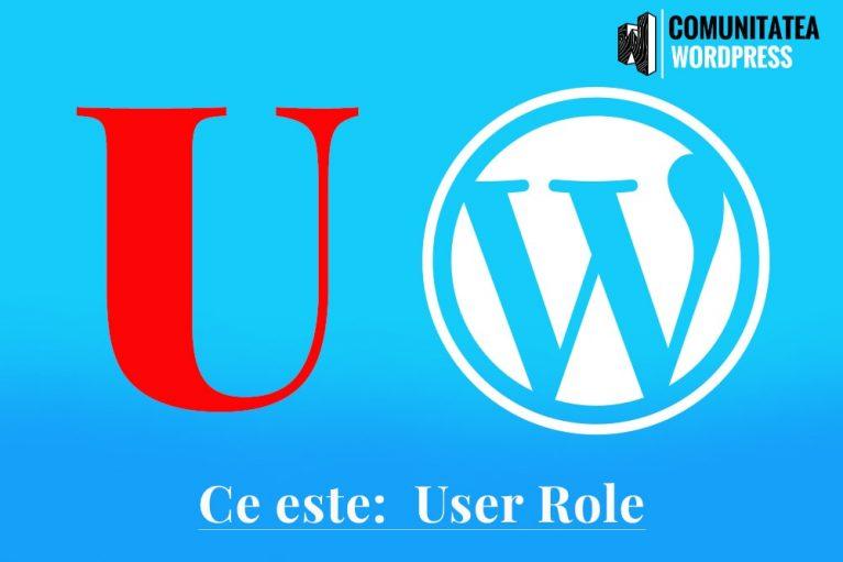 Ce este: User Role - Rolul Utilizatorului