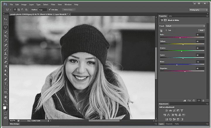 Îmbinați straturile și salvați imaginea alb-negru