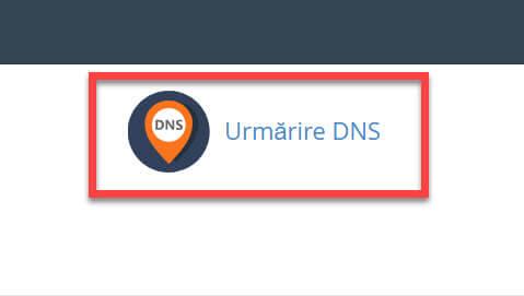 Avansat-Urmărire DNS