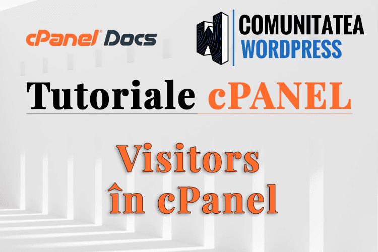 Cum văd Vizitatorii pe Site-ul meu în interfața cPanel